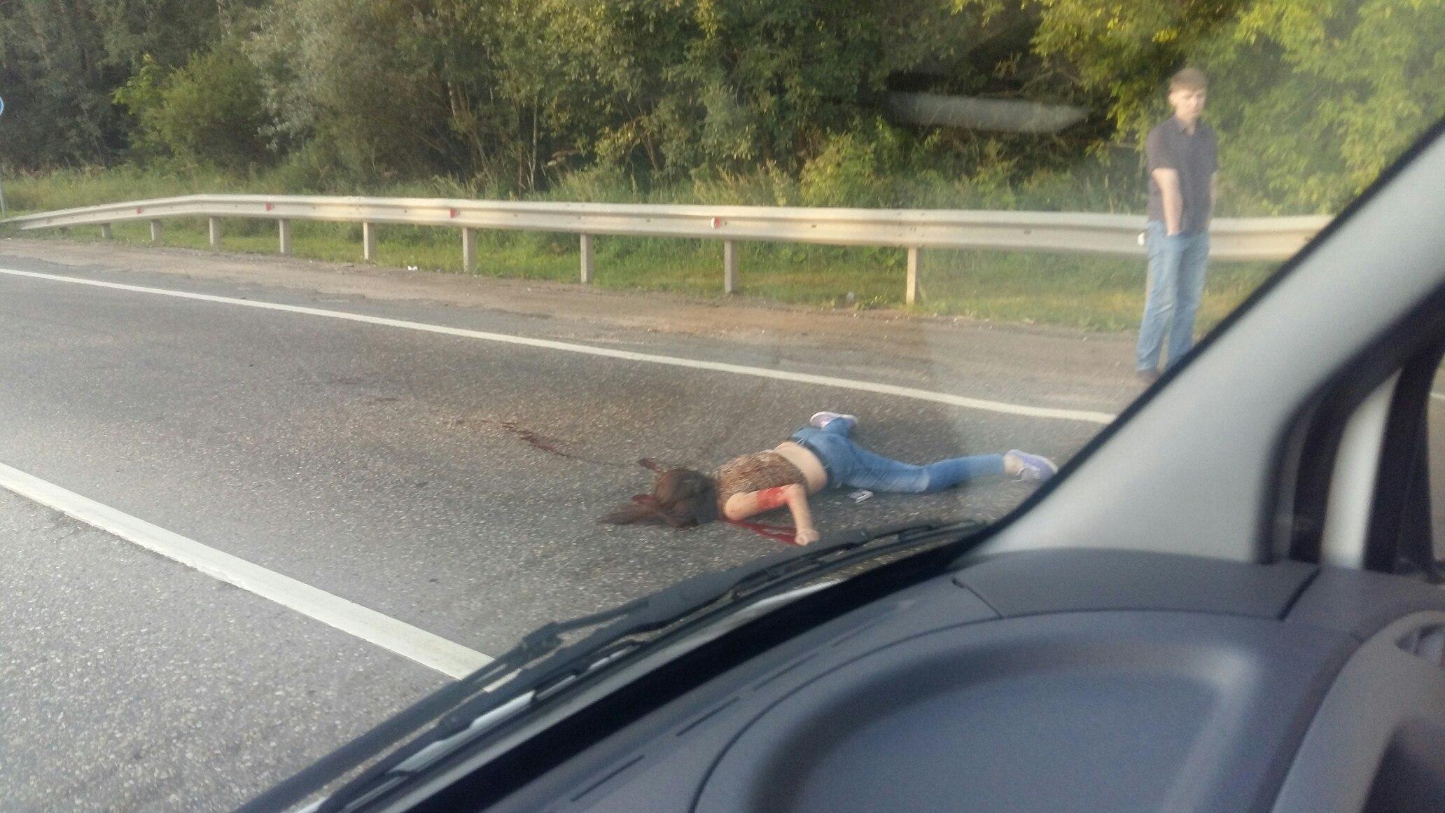 Сбил девушку насмерть фото