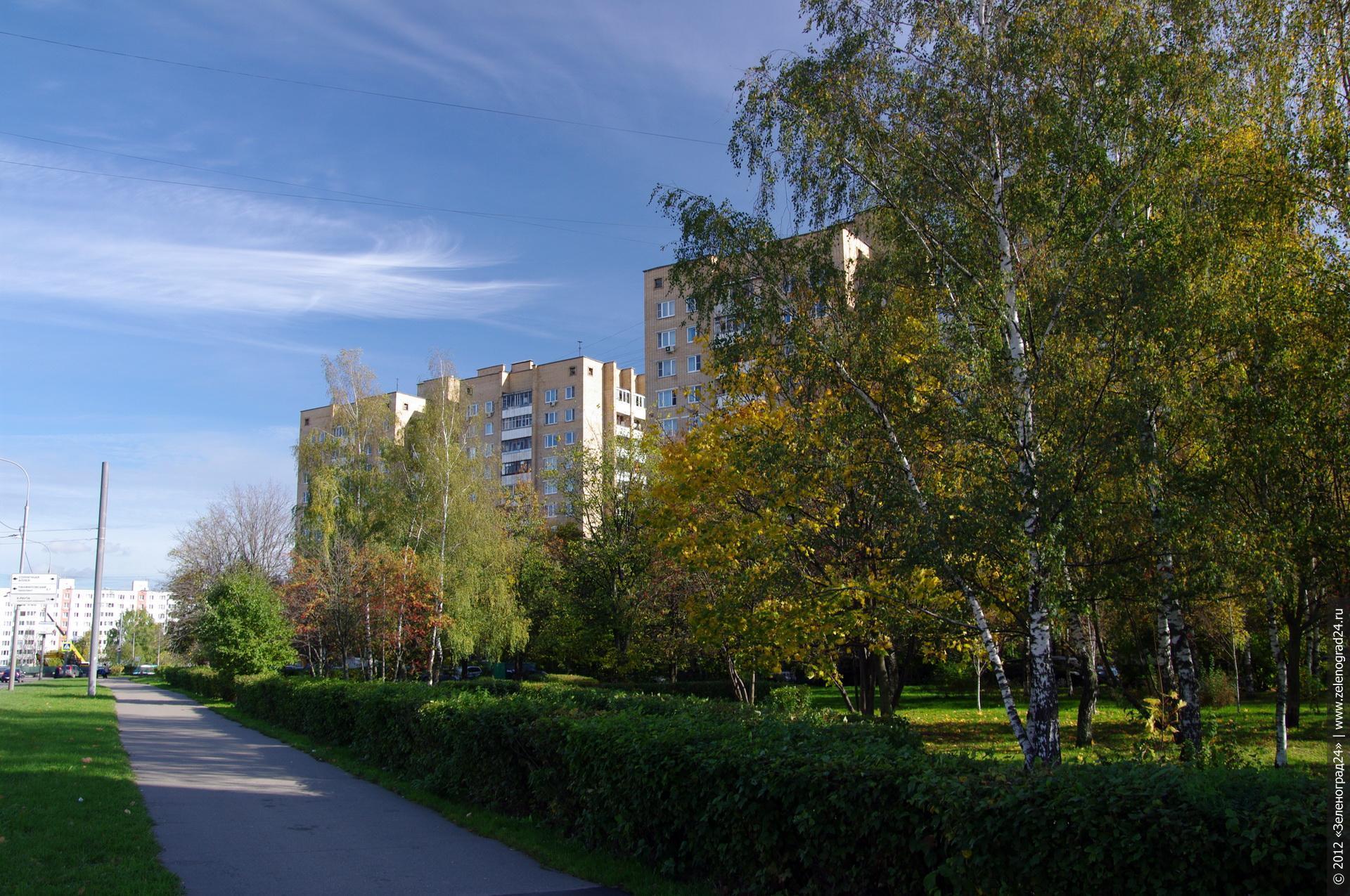 картинки города зеленоград лучше всего